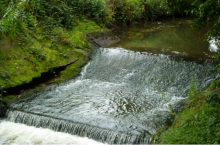 Harpers weir, which was removed to restore fish passage and rehabilitate in channel habitats